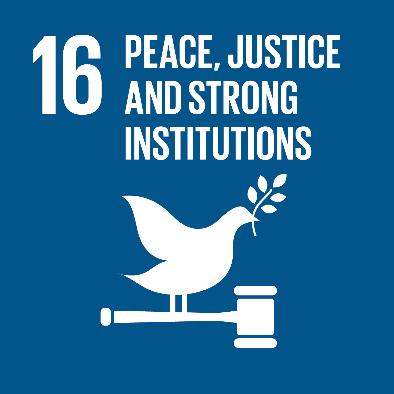 SDG16: Peace, Justice and Strong Institutions